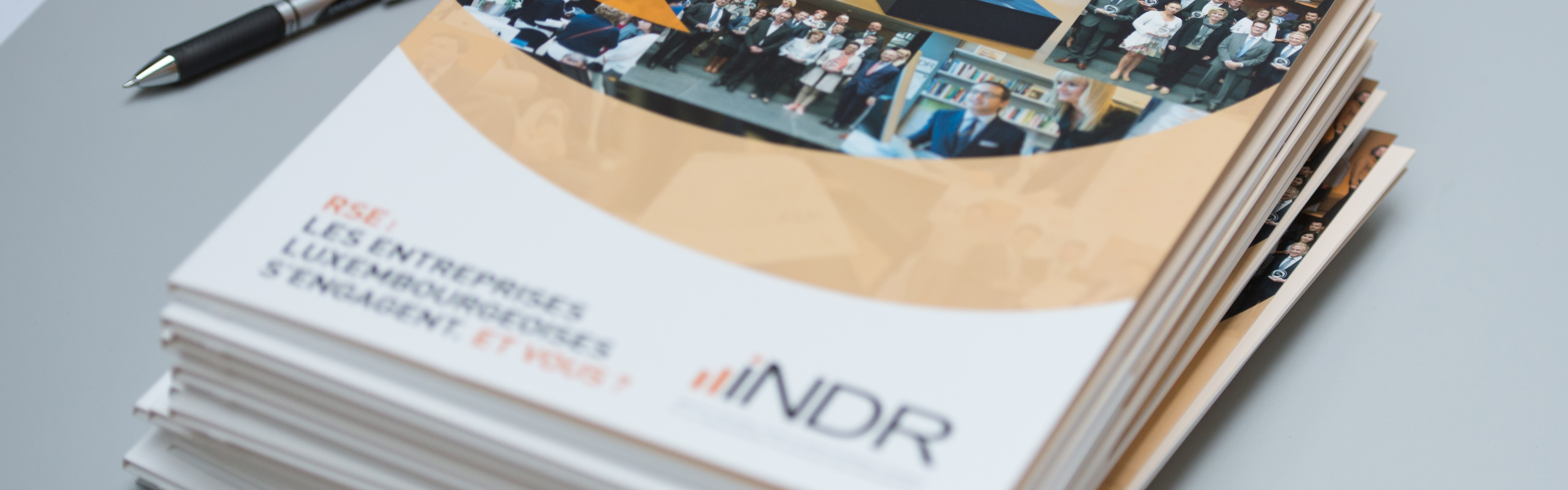 A pack of INDR documents